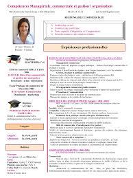 comp eacute tences manag eacute riale commerciale et gestion organisation par cv pdf pdf