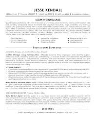 curriculum vitae sample s executive cipanewsletter cover letter sample resume for s manager sample resume for