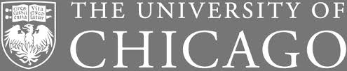 Image result for university of Chicago physics