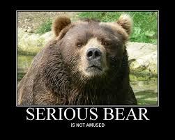 BEARS on Pinterest   Grizzly Bears, Brown Bears and Alaska via Relatably.com