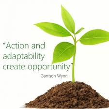 Motivational Change Management Quote: Action and adaptability ...