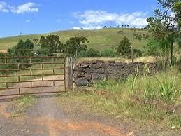 Resultado de imagem para granjas arrombadas