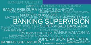 ECB guide to <b>internal</b> models – General topics chapter