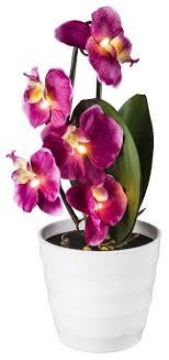 <b>Настольная лампа Globo</b> Lighting ORPHELIA <b>28022P</b> — купить по ...