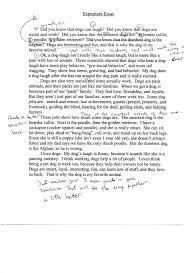 how to write a good argumentative essay how to write a good argumentative essay examples for college