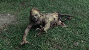 Image result for the walking dead zombies army crawling