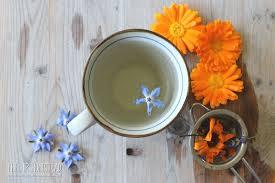 Taste of Sunshine Fresh Flower <b>Herbal Tea</b> | Recipe | Herbalism ...