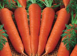 Cara Mencegah Stroke Konsumsi Wortel,cara, stroke, wortel