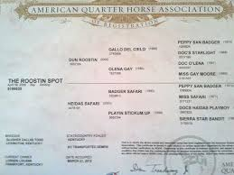 horse essays   purchase case studies analysis   per pageall about horses including the latest in horse cloning  race horse physiology and horse health persuasive essay on horse slaughter horse slaughter is a