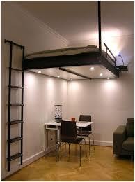 interesting adult loft beds 13 also astounding apartment interior design ideas for adult loft beds astounding modern loft bed