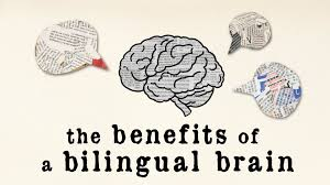becoming bilingual can give your brain a boost what recent becoming bilingual can give your brain a boost what recent research has to say open culture