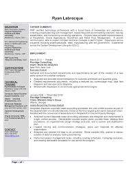 resume summary examples business systems analyst create a resume resume summary examples business systems analyst resume examples resume examples resume objective resume examples business analyst