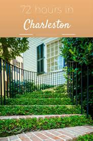charleston newest living fence