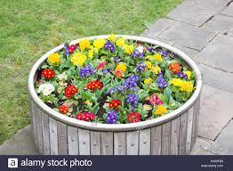 <b>Flowers</b> at <b>Tower Hill</b> Stock Photo: 171435005 - Alamy