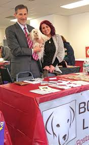 boston dog lawyers media photo galleries attorney cohen and samantha a law student who works at the firm
