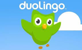 Bildresultat för duolingo