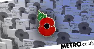 Where to buy metal poppy <b>pin badges</b> for Remembrance Day ...