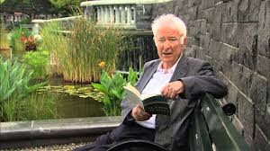seamus heaney s poetry mr hutton s english site seamus heaney s poetry