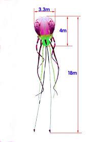 <b>free shipping high quality</b> new 3d kite jellyfish soft kite nylon ripstop ...