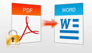 Image result for PDF to word + office 2013
