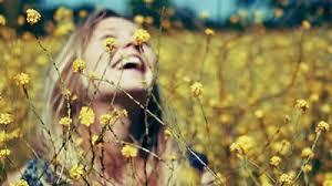 Resultado de imagem para A felicidade