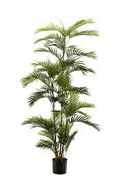 <b>Artificial Phoenix Palm</b> 180cm - The Chelsea Gardener