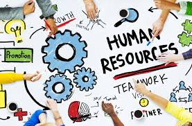 human resources development and management  career development uk    human resources development and management  career development uk essay writing