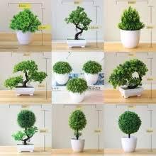 <b>bonsai</b> tree — купите <b>bonsai</b> tree с бесплатной доставкой на ...