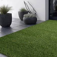 outdoor rugs green x x