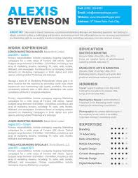 perfect marketing resume sample cvs sample curriculum vitae perfect marketing resume careerperfect best professional resume writing services resumes resume templates resume and