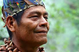 I first encountered the Ashaninkan shaman Juan Flores within the Cinema de Indio, one of the magical* practices of the rainforest facilitated by the ... - Juan-Flores