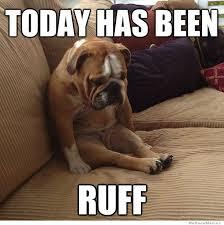 Ruff Day Dog | WeKnowMemes via Relatably.com