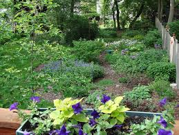Small Picture Perennial Garden Ideas Zone 4 Exquisite Flower Gardening Landscape