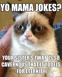 Yo mama jokes? Your sister's twat is so cavernous that it yodels ... via Relatably.com