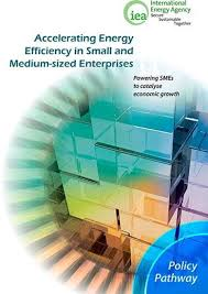 IEA webstore. Policy Pathway - Accelerating <b>Energy Efficiency</b> in ...