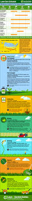 diy lawn care schedule for cool season grasses cool season lawn care schedule infographic