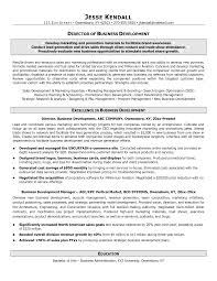 business sample resume  socialsci cosample resume business development resume sample   business sample resume