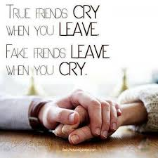 Image result for friendship quotes