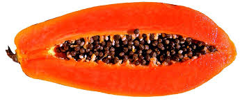 Image result for free images red papaya