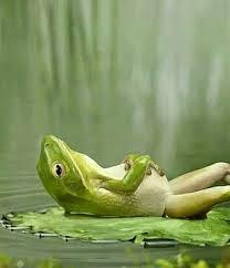 Inner lazy