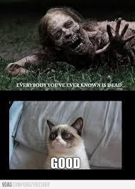 "Me during the zombie apocalypse."" #GrumpyCat #Meme #Grumpy #Cat ... via Relatably.com"