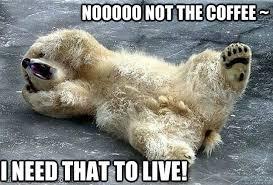 Distressed Bear memes   quickmeme via Relatably.com