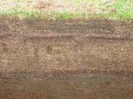 Image result for soil profile