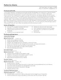 professional internal risk manager templates to showcase your resume templates internal risk manager