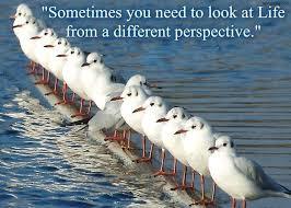 Bildresultat för perspektiv+citat