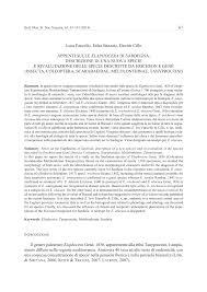 (PDF) Appunti sulle Elaphocera di Sardegna, descrizione di una ...