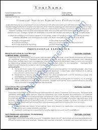 Professional Resume Writing Service  executive resume writing