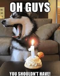 Thank You Quotes For Birthday Cake : Funny Quotes for Birthday ... via Relatably.com
