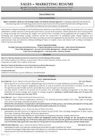 resume samples for s and marketing jobs s director 2