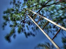 new trends suggestions images for vertigo file vertigo 08018 jpg